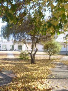 Schöner Schulhof